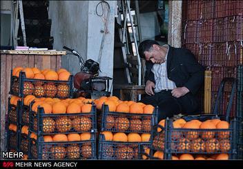 مناسب سازی ۸۹ میدان و بازار میوه و تره بار برای سالمندان