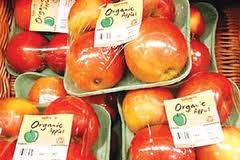 توسعه کشاورزی ارگانیک نیازمند حمایت دولت است/ سهم ناچیز اردبیل