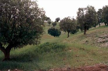 معرفی منطقه حفاظت شده سبز کوه بعنوان یازدهمین ذخیره گاه زیستکره