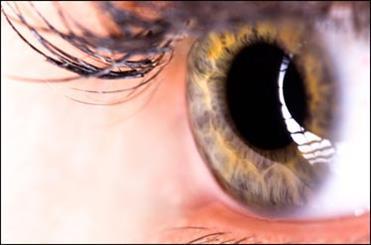 درمان باکتری های مضر چشمی با میکروب های متجاوز