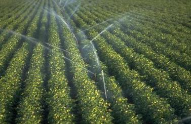 ابیاری به شیوه نو در کشاورزی