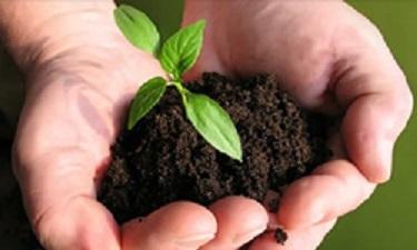 توسعه ی کشاورزی زمینه ساز تامین رفاه ملی است