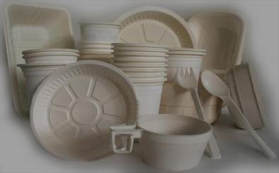 عرضه غذای گرم در ظروف یکبار مصرف پلاستیکی در دزفول ممنوع می شود