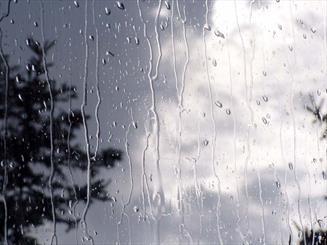 آغاز نخستین بارشهای پائیزی و کاهش دمای هوا در کرمان/ هشدار به صاحبان مزارع زعفران در خصوص برداشت محصول