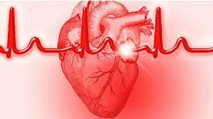 افزایش حملات قلبی بعد از ۴۰ سالگی/توصیه به مردان و زنان