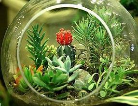 نخستین جشنواره گل و گیاه در بابل برگزار می شود/ بودجه 800 میلیارد ریالی شهرداری