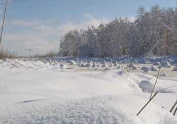 چهارهزار نفرچهارمحالی در محاصره برف/ ارتفاع برف به بالای دو متر رسید