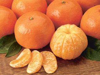 نارنگی جای گوجهفرنگی را گرفت/ هرکیلوگرم نارنگی؛ 10 هزار تومان
