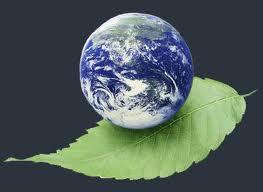 حفاظت محیط زیست از کودکی آغاز شود/ رسانه ها قبل از دولتمردان مسئول حل بحران زيست محيطي