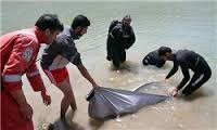 جسد جوانی از رودخانه کارون گرفته شد