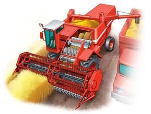 افزایش 70 درصدی سطح زیرکشت محصولات سبزی و صیفی در مهران