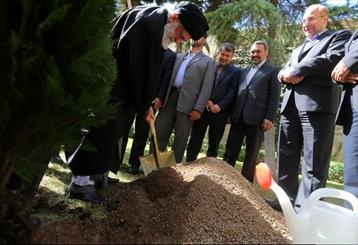 Leader plants a sapling ahead of National Tree Day