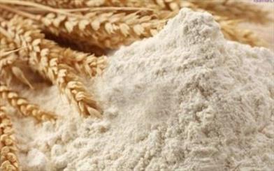 برخورد قاطع با متخلفان آرد و نان در شهرستان رودان صورت میگیرد