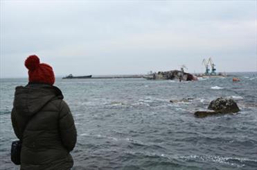 Binlerce koyun Karadeniz sularında boğularak telef oldu