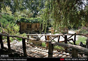 هزار هکتار باغ در کرمانشاه احداث شده است/ کاهش سطح زیر کشت ذرت سياست جهاد كشاورزي