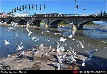 پل تاریخی چشمه کیله با سنگفرش شدن آسیب نخواهد دید