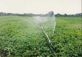 برنامه ریزی و مطالعه برای اصلاح سیستم آبیاری 317 هزار هکتار ار اراضی کشاورزی آذربایجان غربی