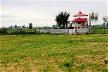تغییر کاربری اراضی در مازندران اسفبار است