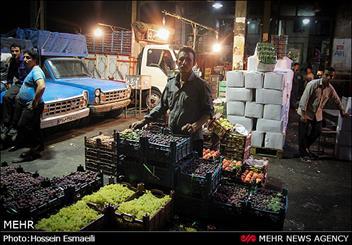 آغاز برخورد با دلالان میوه در میدان مرکزی تره بار تهران