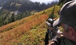 شکارچی غیرمجاز دو راس آهو در گرمسار دستگیر شد
