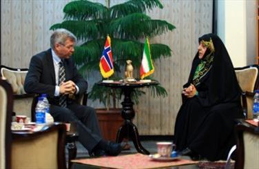 VP: Terrorism impacts Iranian environment negatively