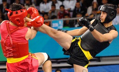 +200 Wushu artists to attend Pars Cup in Tehran