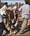 اصابه  ثلاثه عراقيين اثر انفجار سياره ملغومه في مدينه الحله