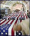 مقتل 100 جندي امريكي في العراق خلال الشهر الجاري