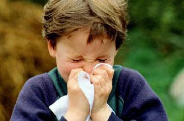 گیان لە دەستدانی ۱۵ کەس لە ئێران بە هۆی ڤایرۆسی ئەنفۆلانزا