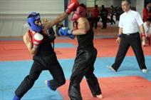 مسابقات کونگفو قهرمانی جهان در ایران برگزار می شود