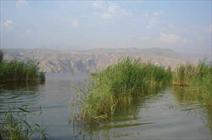 """بارشهای اخیر فارس و امید به احیاء """"پریشان""""/ نهرها به سوی تالاب جاری شد"""