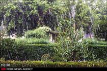 خسارت 136 میلیارد ریالی تگرگ به اراضی کشاورزی شهرستان سراب