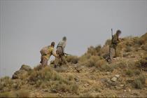 شکارچیان محیط بانان دنا را به گلوله بستند/دستگیری شکارچیان خرس قهوهای