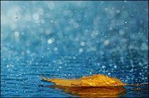 جزئیات بارندگیهای لرستان طی 24 ساعت گذشته/ بارشها به 210 میلی متر رسید