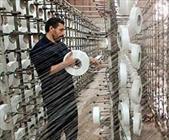 ۱۴ درصد اشتغال استان زنجان در بخش صنعت نساجی است