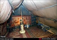 9 هزار نفر مسافر نوروزی اردبیل در چادر اقامت کردند
