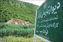 دیوار تاریخی گرگان طولانیترین اثر معماری ايران باستان