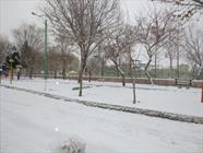 افزایش بارش برف در لرستان نسبت به سالهای گذشته/ ثبت 30 سانتی متر برف در بروجرد