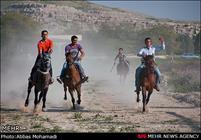 ۱۲ ورزشکار زنجانی در رقابتهای پرش با اسب حائز رتبه شدند