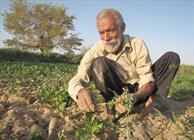 ارتباط کشاورزی اصفهان به عنوان عامل کم آبی در خوزستان منطقی نیست