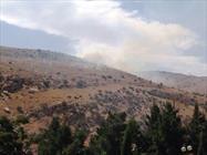 آتش جنگل دست کاشت «عرب داغ» کلاله مهار شد