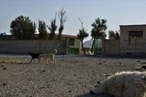 ضرب الاجل ۱۰ روزه استاندار سیستان و بلوچستان پس از ۱۰۰ روز به ثمر نشست