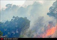 ۲۰۰ هکتار از مراتع  شهرستان طارم در آتش سوخت
