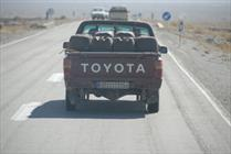 چهارپاهای نفت کش در مرزهای شرقی/ مشکهای شیر با سوخت پر می شود
