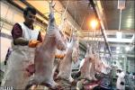 پروژه اتاق پیش سرد کشتارگاه مشترک اردستان در بلاتکلیفی قرار دارد