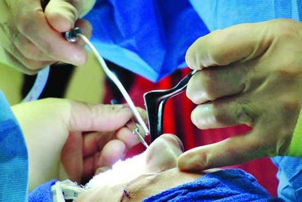 هزینه عمل بینی در بیمارستان طالقانی