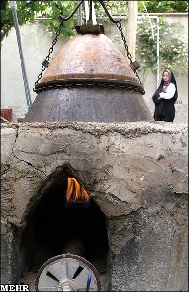 متن حقوقی زیبا گزارش تصویری/ سرزمین مهر: گلاب گیری در نیاسرکاشان -3 ...
