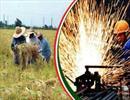 رفع موانع قانونی برای توسعه گسترده شهرکهای کشاورزی ضروری است