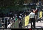 پاتک شبانه پلیس به اراذل و اوباش/دستگیری ۱۲۰ نفر