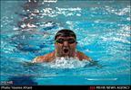 شناگران معلول قم برای نخستین بار قهرمان کشور شدند